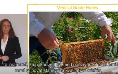 Mikrobioložka o antimikrobiální účinnosti lékařského medu – přednáška EWMA 2020